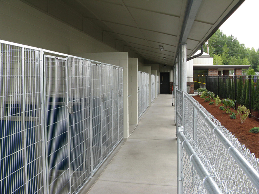 Outdoor kennels.jpg